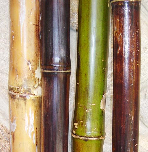 Bamboo sticks decoration for How to decorate bamboo sticks